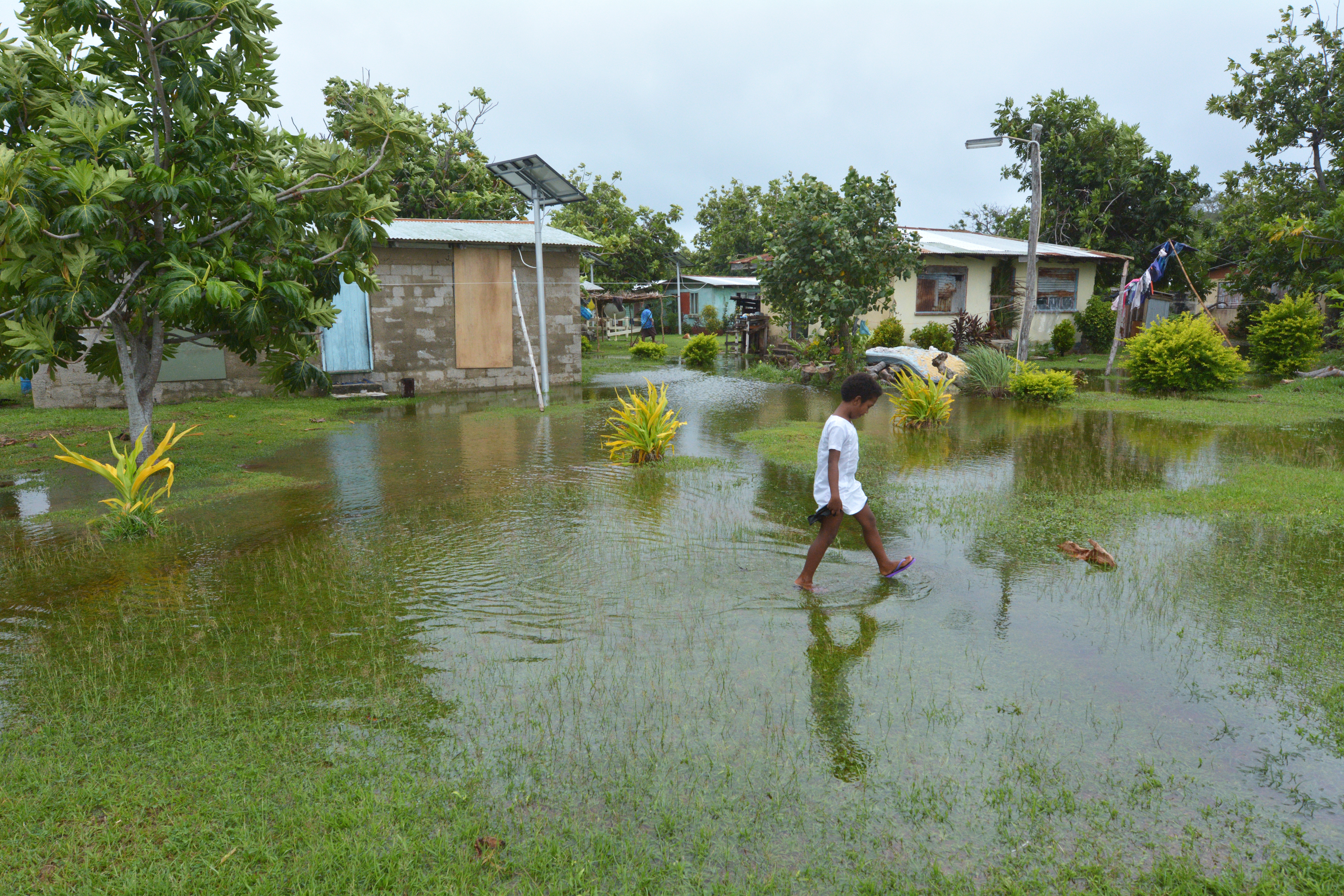 Indigenous Fijian girl walks in flooded land in Fiji.